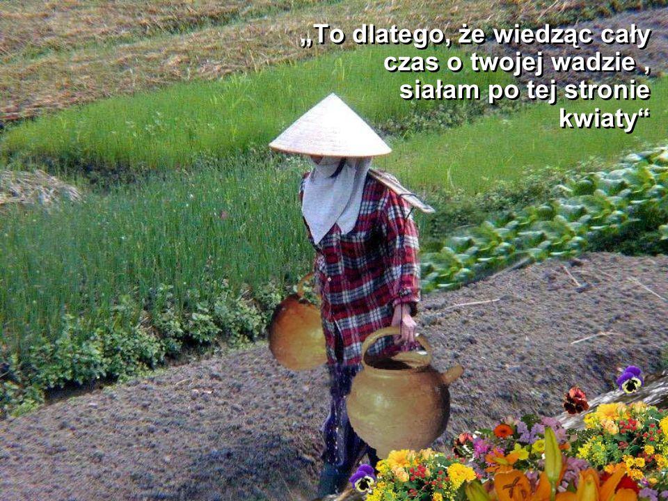 """Na to powiedziała stara kobieta: """"Czy zwróciłeś uwagę, że kwiaty rosną tylko po jednej stronie drogi?"""" Na to powiedziała stara kobieta: """"Czy zwróciłeś"""