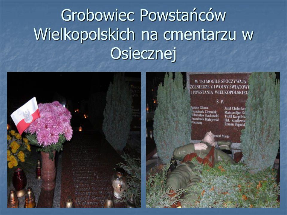 Grobowiec Powstańców Wielkopolskich na cmentarzu w Osiecznej