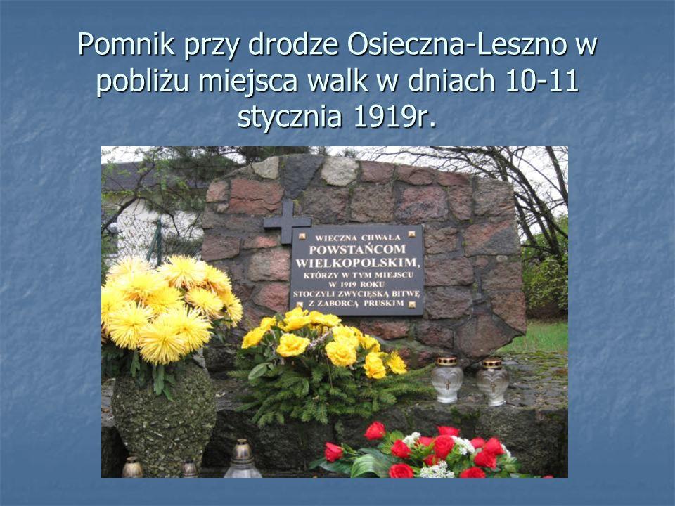 Pomnik przy drodze Osieczna-Leszno w pobliżu miejsca walk w dniach 10-11 stycznia 1919r.