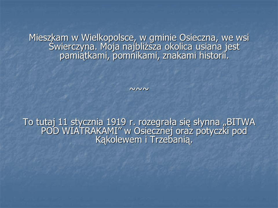 Mieszkam w Wielkopolsce, w gminie Osieczna, we wsi Świerczyna. Moja najbliższa okolica usiana jest pamiątkami, pomnikami, znakami historii. ~~~ To tut