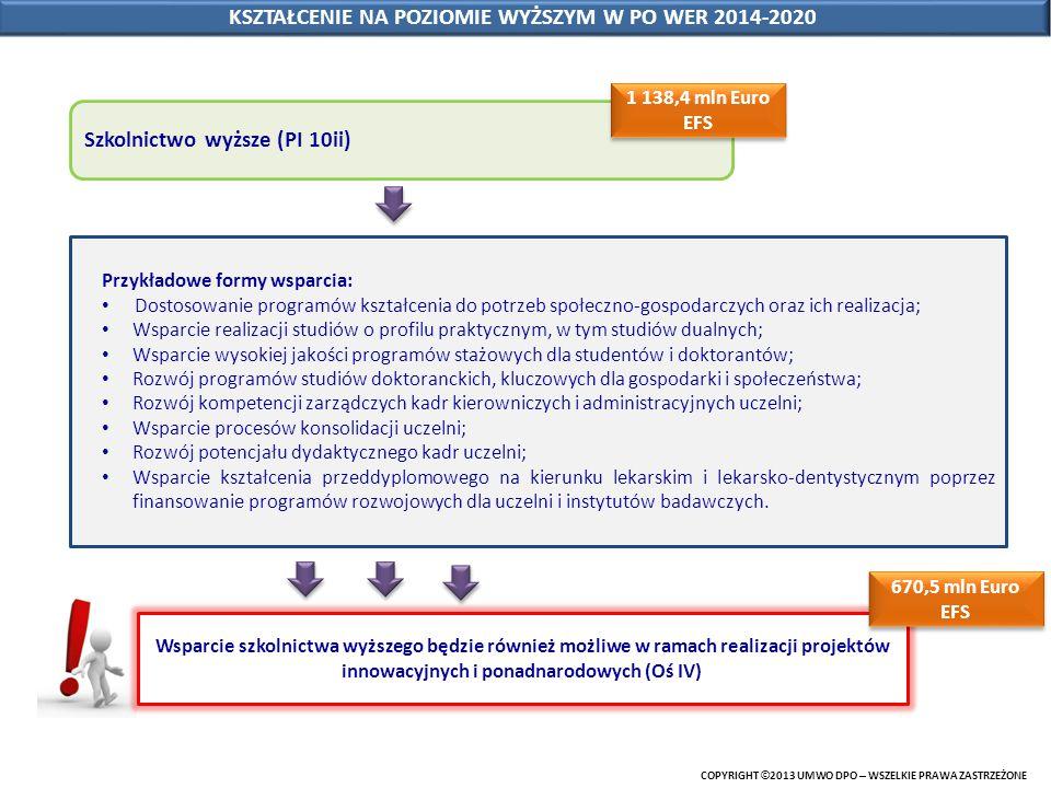 COPYRIGHT © 2013 UMWO DPO – WSZELKIE PRAWA ZASTRZEŻONE KSZTAŁCENIE NA POZIOMIE WYŻSZYM W PO WER 2014-2020 Szkolnictwo wyższe (PI 10ii) Przykładowe for