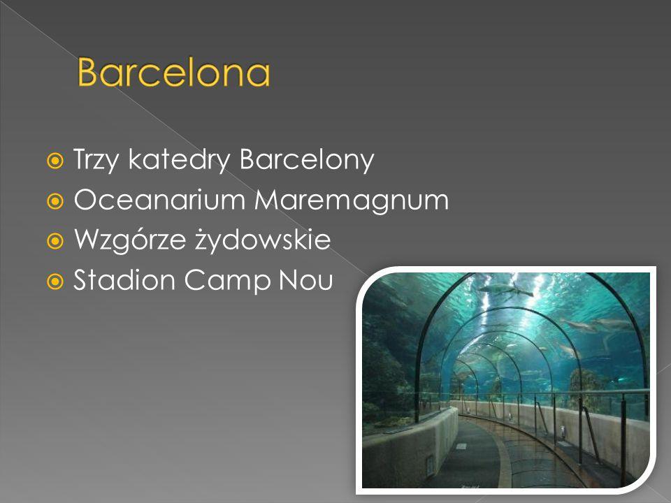  Trzy katedry Barcelony  Oceanarium Maremagnum  Wzgórze żydowskie  Stadion Camp Nou