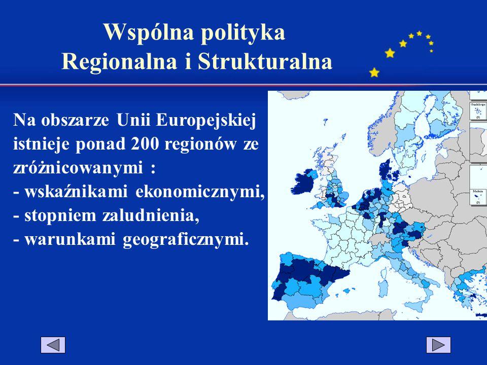Na obszarze Unii Europejskiej istnieje ponad 200 regionów ze zróżnicowanymi : - wskaźnikami ekonomicznymi, - stopniem zaludnienia, - warunkami geograf