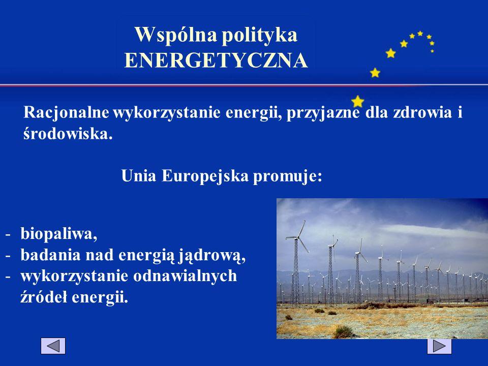 Wspólna polityka ENERGETYCZNA Racjonalne wykorzystanie energii, przyjazne dla zdrowia i środowiska. Unia Europejska promuje: -biopaliwa, -badania nad