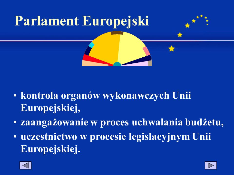 kontrola organów wykonawczych Unii Europejskiej, zaangażowanie w proces uchwalania budżetu, uczestnictwo w procesie legislacyjnym Unii Europejskiej.