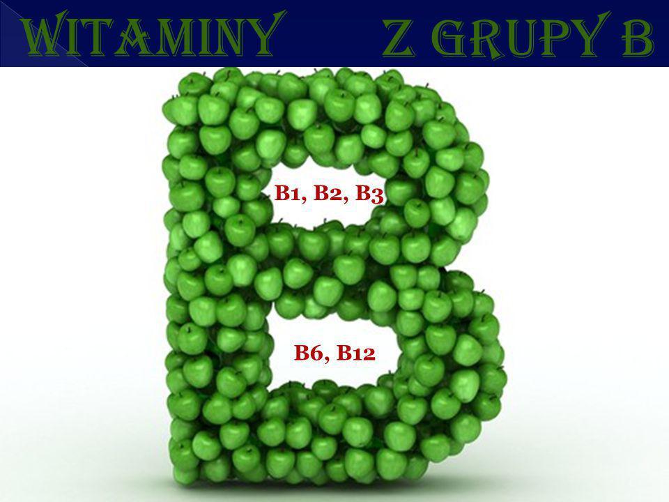 Z GRUPY B B1, B2, B3 B6, B12 WITAMINY