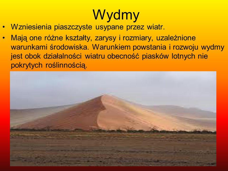 Wydmy Wzniesienia piaszczyste usypane przez wiatr. Mają one różne kształty, zarysy i rozmiary, uzależnione warunkami środowiska. Warunkiem powstania i