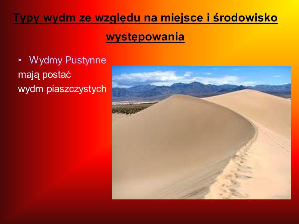 Typy wydm ze względu na miejsce i środowisko występowania Wydmy Pustynne mają postać wydm piaszczystych