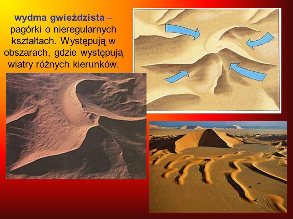 wydma gwieździsta – pagórki o nieregularnych kształtach. Występują w obszarach, gdzie występują wiatry różnych kierunków.