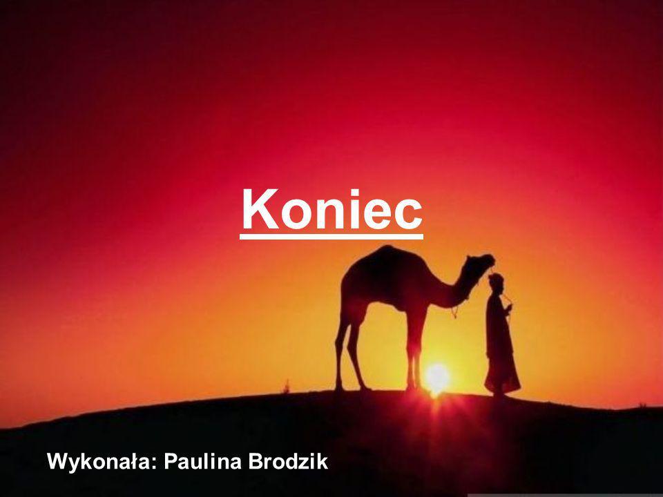 Koniec Wykonała: Paulina Brodzik