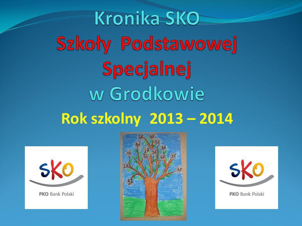 Rok szkolny 2013 – 2014