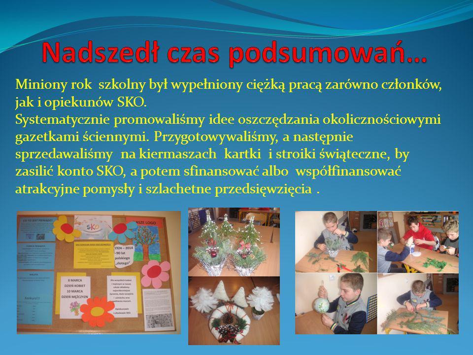 Miniony rok szkolny był wypełniony ciężką pracą zarówno członków, jak i opiekunów SKO.