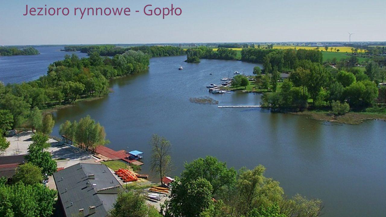 Jezioro rynnowe - Gopło