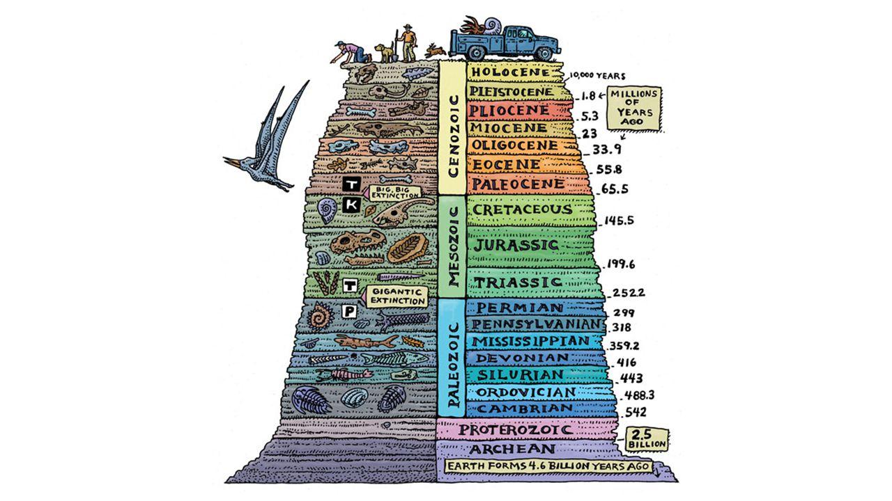 Procesy geologiczne procesy wewnętrzne ruchy płyt kontynentalnych procesy fałdowania i wypiętrzania trzęsienia ziemi wybuchy wulkaniczne