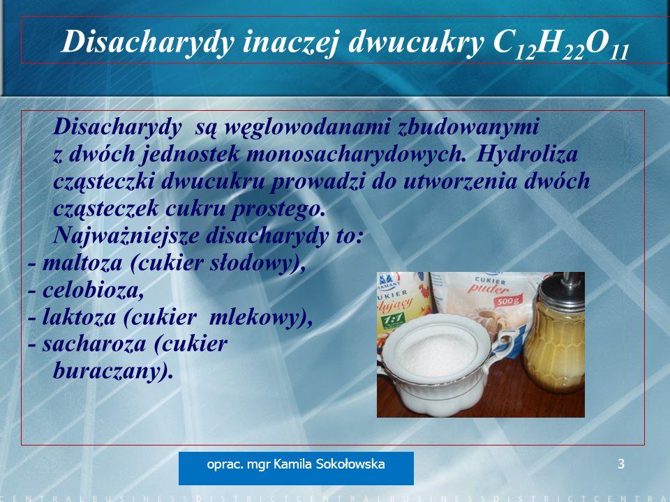 Disacharydy są węglowodanami zbudowanymi z dwóch jednostek monosacharydowych. Hydroliza cząsteczki dwucukru prowadzi do utworzenia dwóch cząsteczek cu