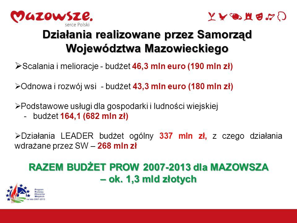  Scalania i melioracje - budżet 46,3 mln euro (190 mln zł)  Odnowa i rozwój wsi - budżet 43,3 mln euro (180 mln zł)  Podstawowe usługi dla gospodarki i ludności wiejskiej - budżet 164,1 (682 mln zł)  Działania LEADER budżet ogólny 337 mln zł, z czego działania wdrażane przez SW – 268 mln zł RAZEM BUDŻET PROW 2007-2013 dla MAZOWSZA – ok.