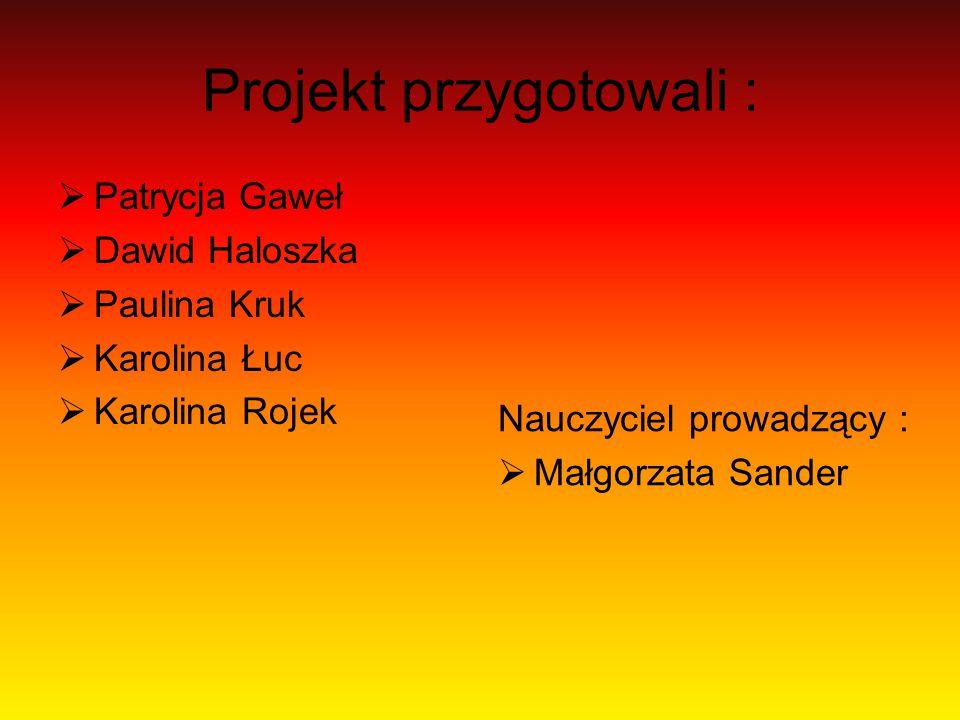 Projekt przygotowali :  Patrycja Gaweł  Dawid Haloszka  Paulina Kruk  Karolina Łuc  Karolina Rojek Nauczyciel prowadzący :  Małgorzata Sander