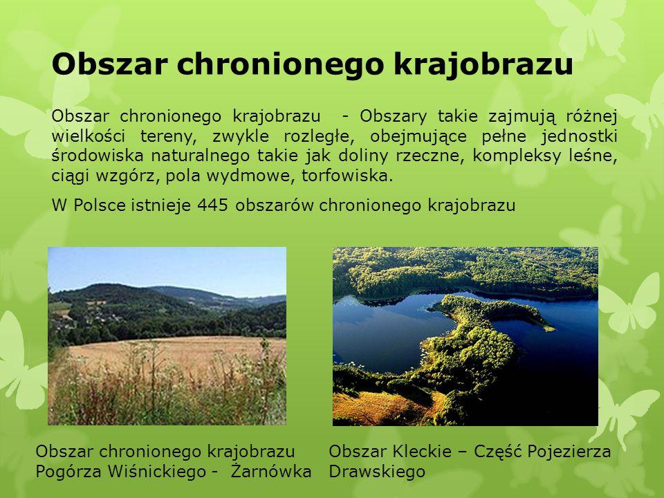 Obszar chronionego krajobrazu Obszar chronionego krajobrazu - Obszary takie zajmują różnej wielkości tereny, zwykle rozległe, obejmujące pełne jednost