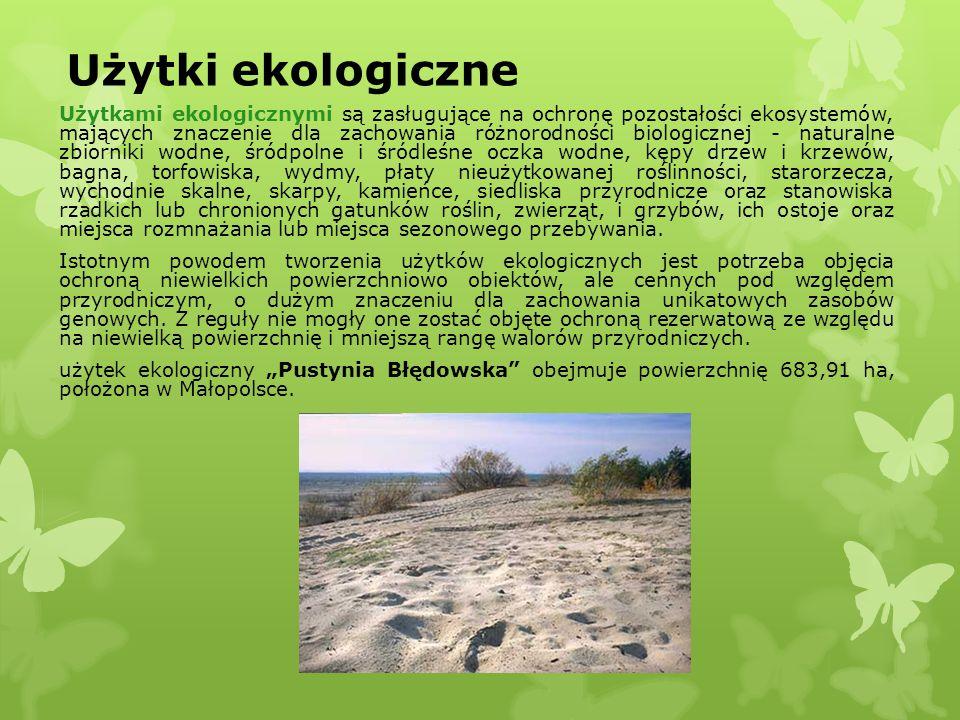 Użytki ekologiczne Użytkami ekologicznymi są zasługujące na ochronę pozostałości ekosystemów, mających znaczenie dla zachowania różnorodności biologic