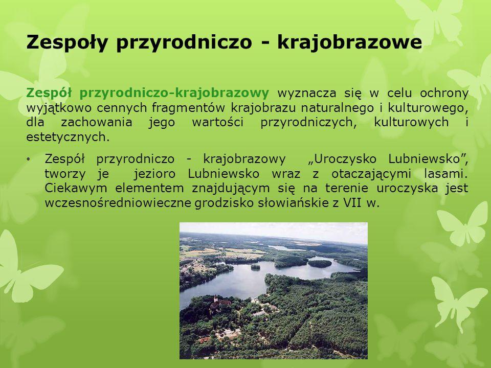 Zespoły przyrodniczo - krajobrazowe Zespół przyrodniczo-krajobrazowy wyznacza się w celu ochrony wyjątkowo cennych fragmentów krajobrazu naturalnego i