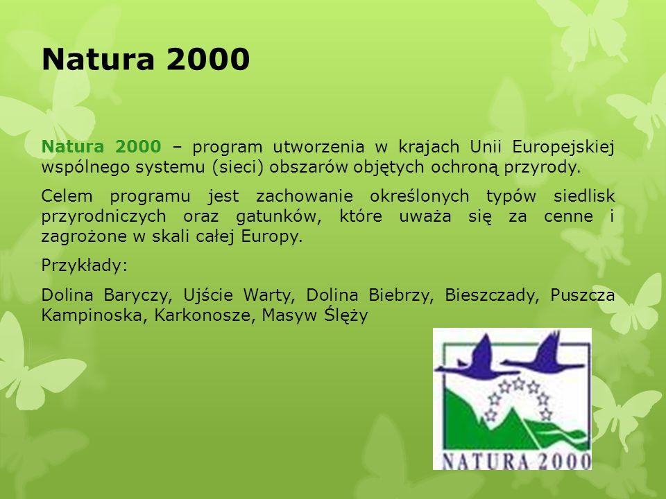 Natura 2000 Natura 2000 – program utworzenia w krajach Unii Europejskiej wspólnego systemu (sieci) obszarów objętych ochroną przyrody. Celem programu