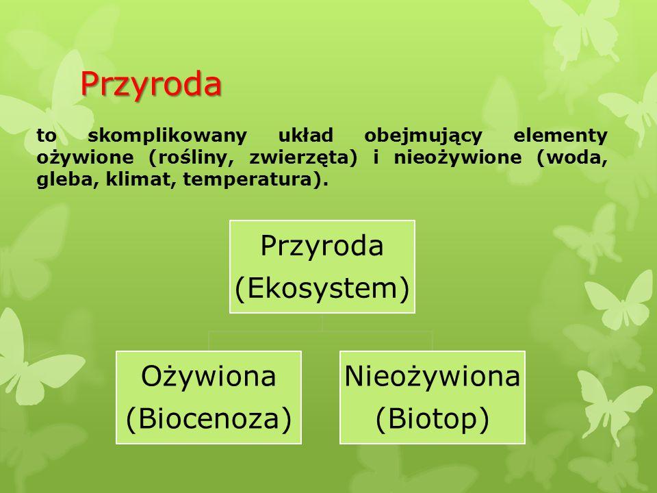 Przyroda to skomplikowany układ obejmujący elementy ożywione (rośliny, zwierzęta) i nieożywione (woda, gleba, klimat, temperatura). Przyroda (Ekosyste