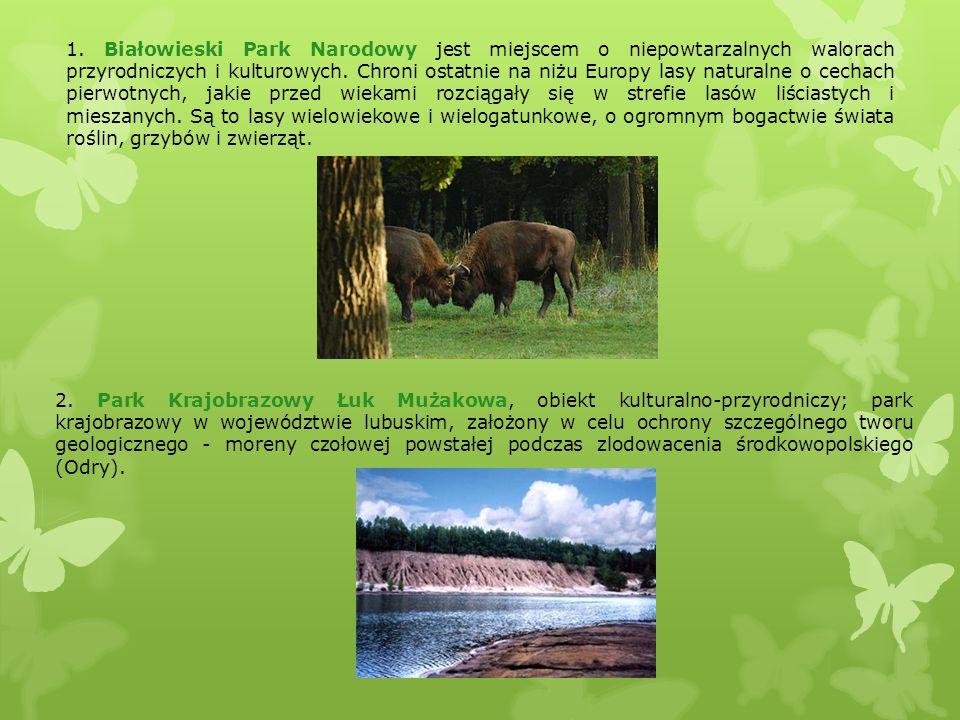 2. Park Krajobrazowy Łuk Mużakowa, obiekt kulturalno-przyrodniczy; park krajobrazowy w województwie lubuskim, założony w celu ochrony szczególnego two