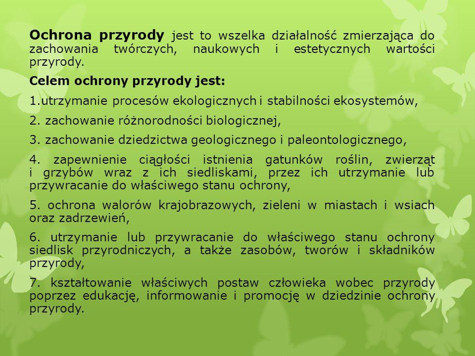 FORMY OCHRONY PRZYRODY Dane z 2008r.