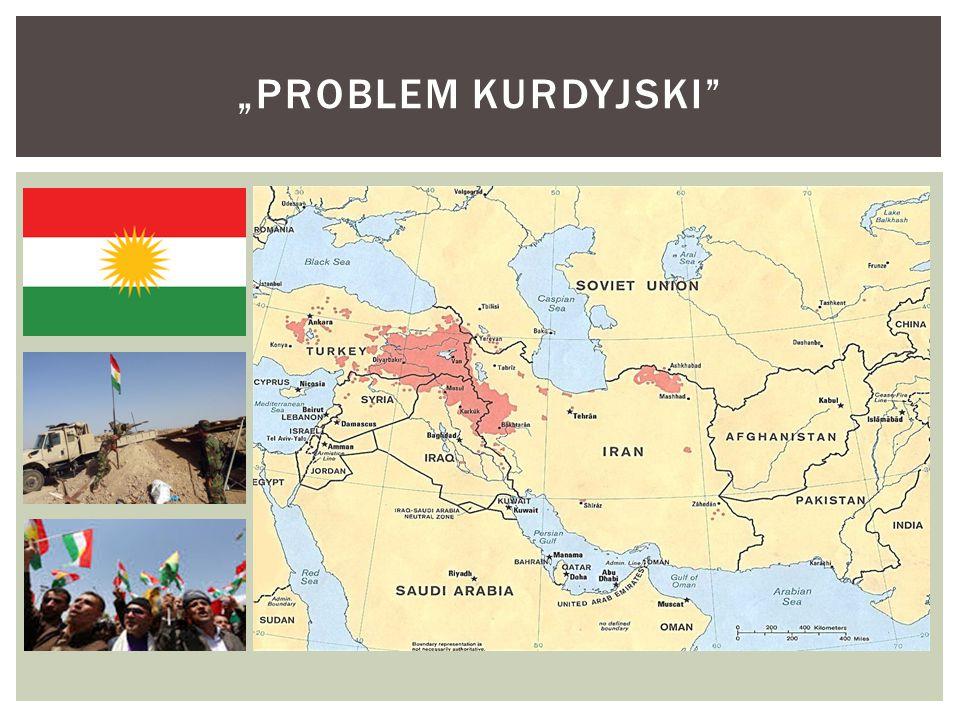 """PROBLEM KURDYJSKI"
