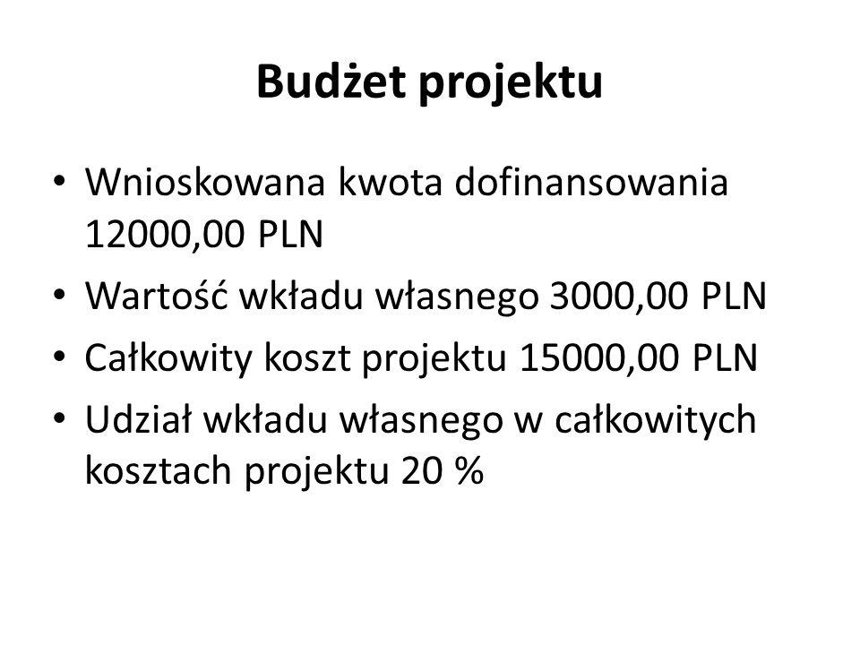 Budżet projektu Wnioskowana kwota dofinansowania 12000,00 PLN Wartość wkładu własnego 3000,00 PLN Całkowity koszt projektu 15000,00 PLN Udział wkładu własnego w całkowitych kosztach projektu 20 %