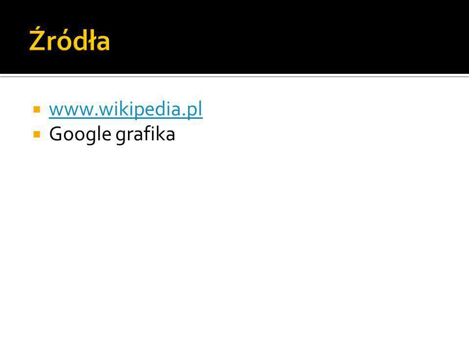  www.wikipedia.pl www.wikipedia.pl  Google grafika