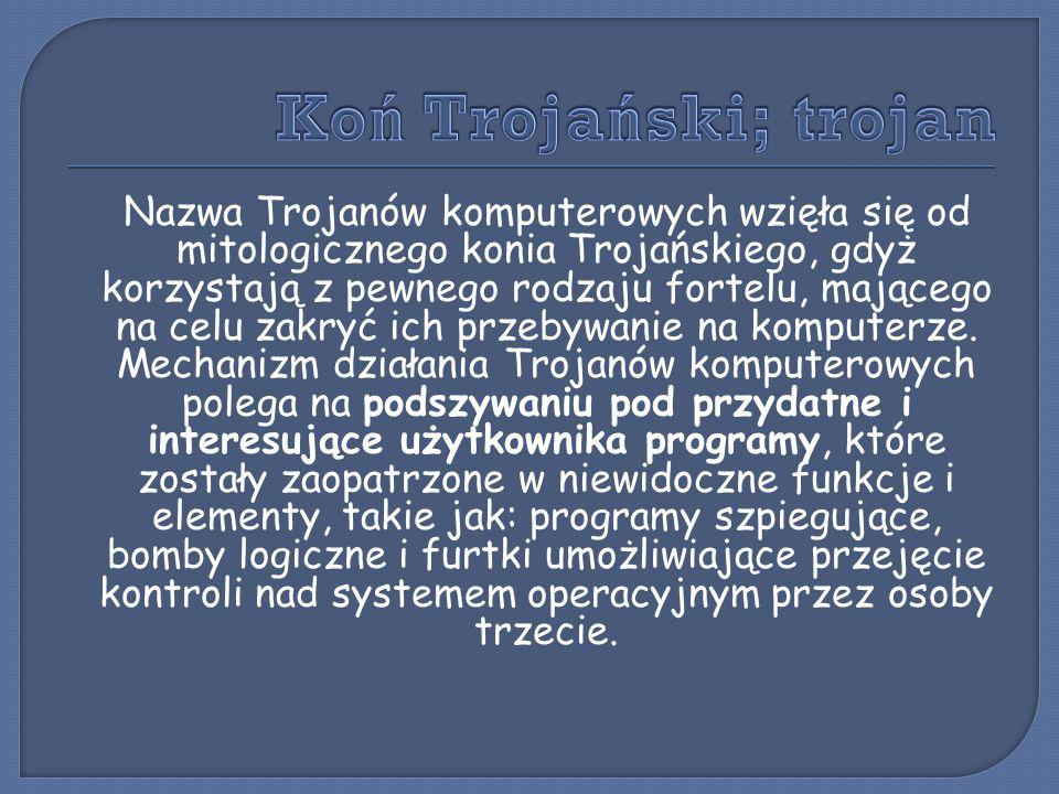 Nazwa Trojanów komputerowych wzięła się od mitologicznego konia Trojańskiego, gdyż korzystają z pewnego rodzaju fortelu, mającego na celu zakryć ich p