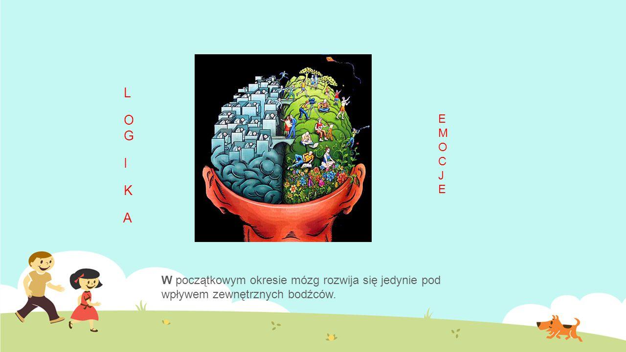 L O G I K A W początkowym okresie mózg rozwija się jedynie pod wpływem zewnętrznych bodźców. EMOCJEEMOCJE