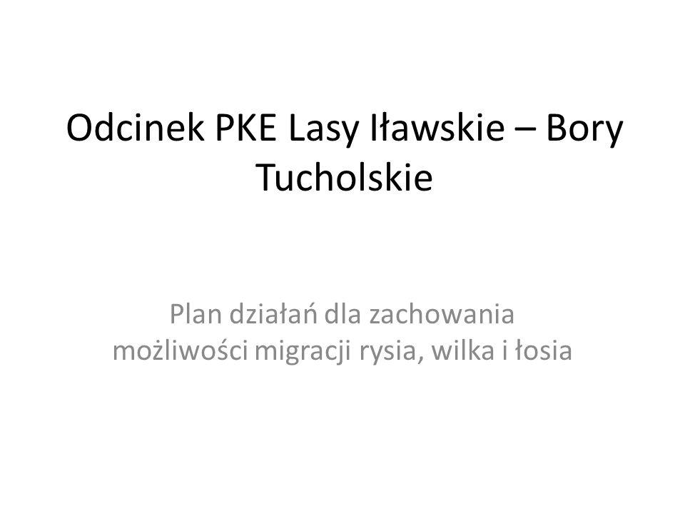 Odcinek PKE Lasy Iławskie – Bory Tucholskie Plan działań dla zachowania możliwości migracji rysia, wilka i łosia
