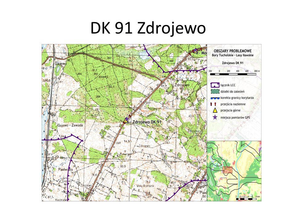 DK 91 Zdrojewo