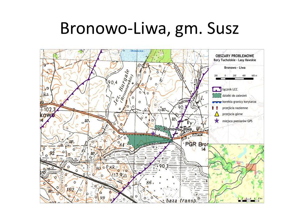 Bronowo-Liwa, gm. Susz