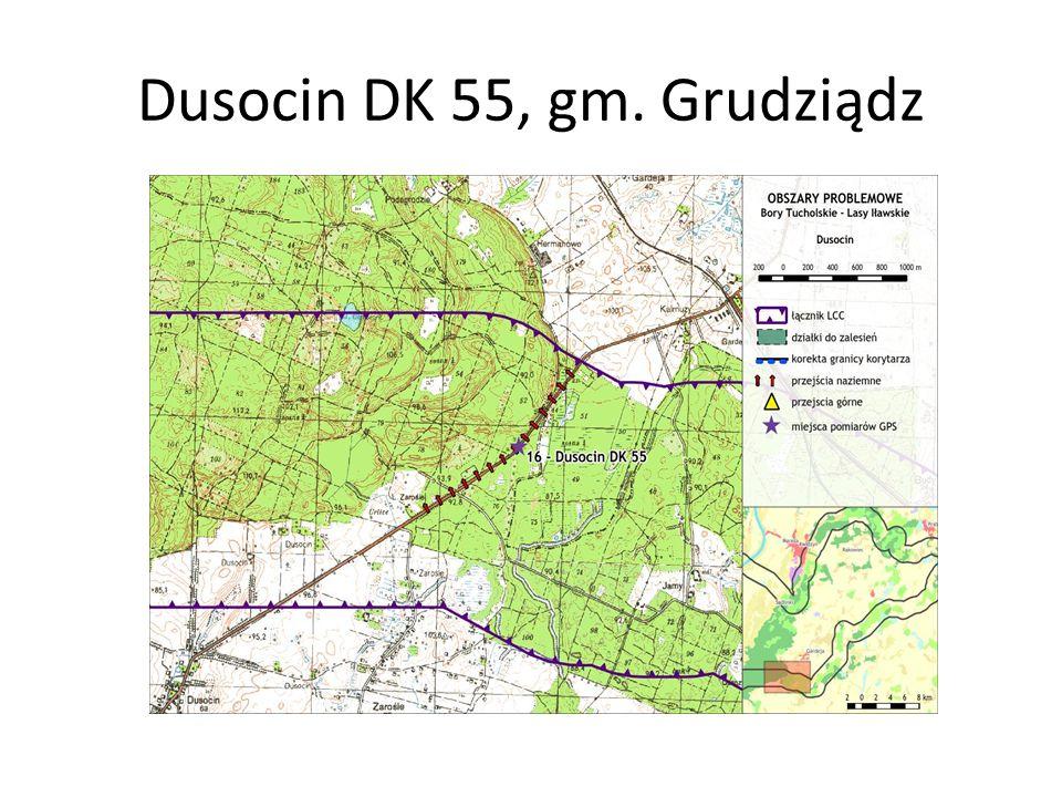 Dusocin DK 55, gm. Grudziądz