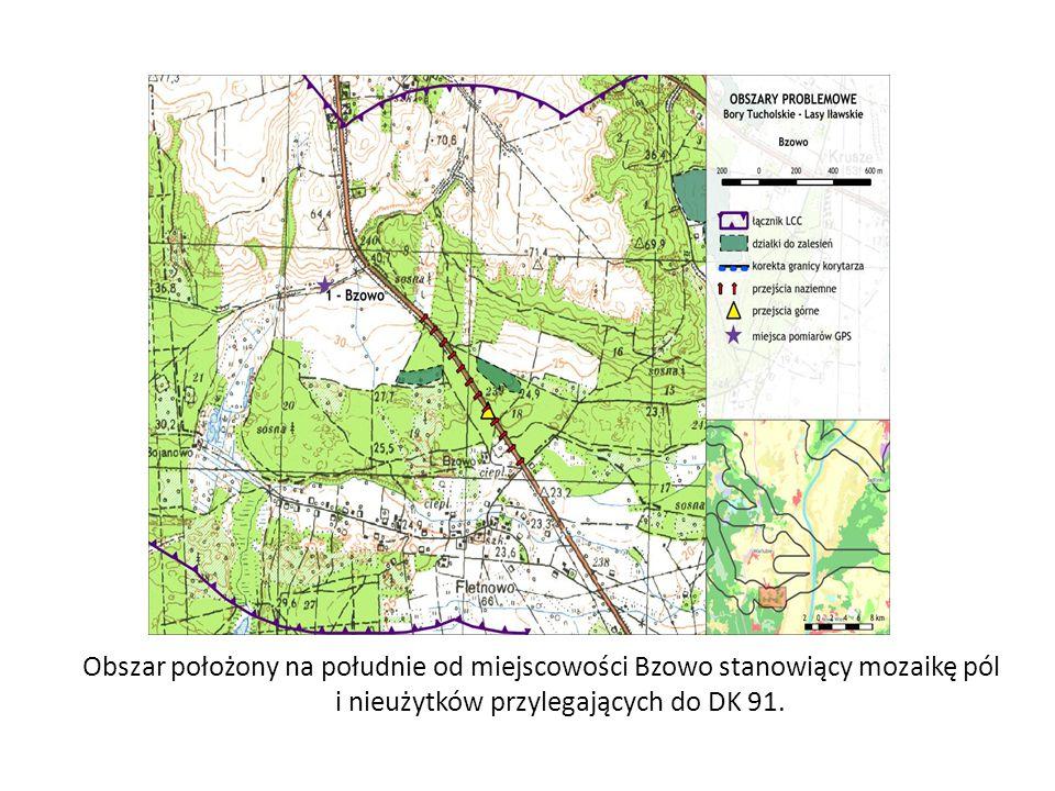 Obszar położony na południe od miejscowości Bzowo stanowiący mozaikę pól i nieużytków przylegających do DK 91.