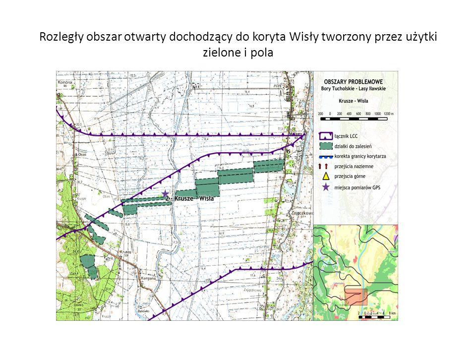 Rozległy obszar otwarty dochodzący do koryta Wisły tworzony przez użytki zielone i pola