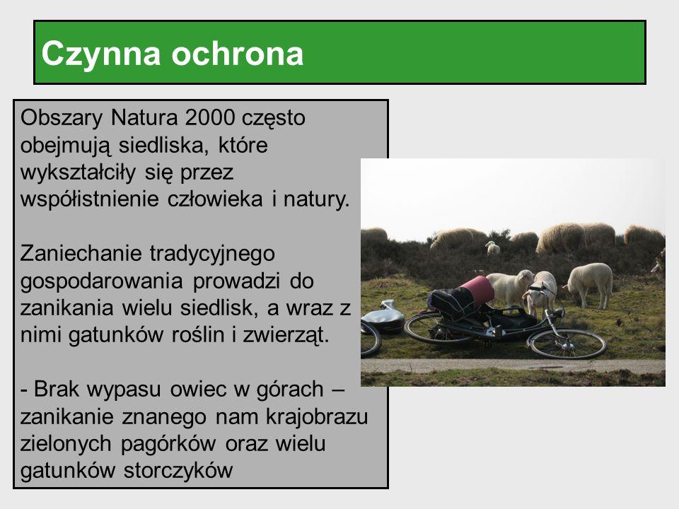 Czynna ochrona Obszary Natura 2000 często obejmują siedliska, które wykształciły się przez współistnienie człowieka i natury. Zaniechanie tradycyjnego