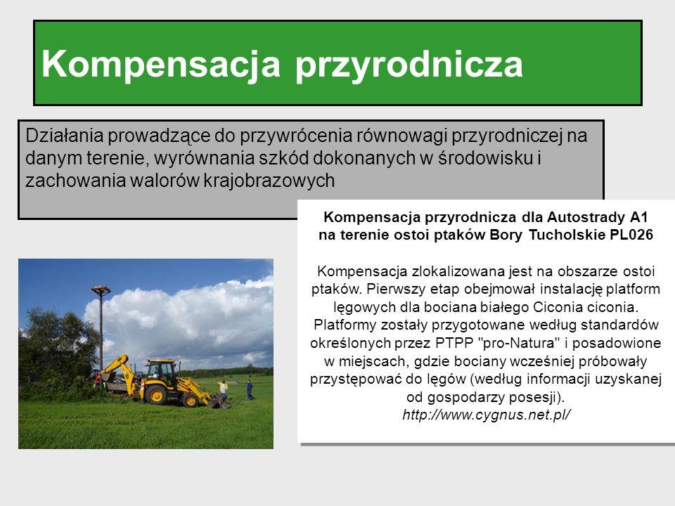 Kompensacja przyrodnicza Działania prowadzące do przywrócenia równowagi przyrodniczej na danym terenie, wyrównania szkód dokonanych w środowisku i zac