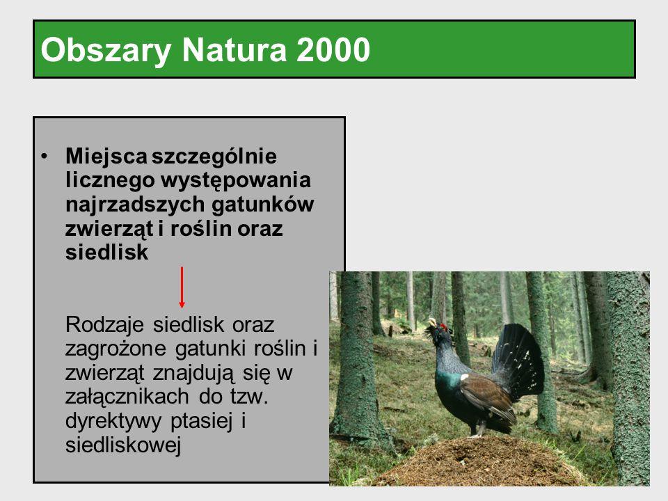 Obszary Natura 2000 Miejsca szczególnie licznego występowania najrzadszych gatunków zwierząt i roślin oraz siedlisk Rodzaje siedlisk oraz zagrożone ga