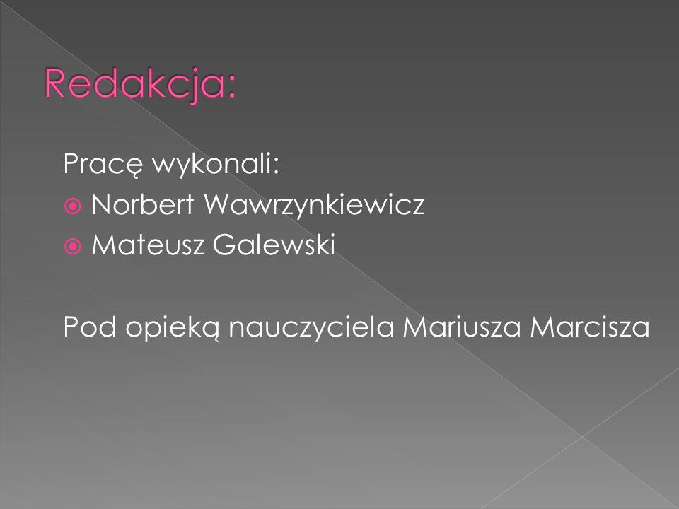 Pracę wykonali:  Norbert Wawrzynkiewicz  Mateusz Galewski Pod opieką nauczyciela Mariusza Marcisza