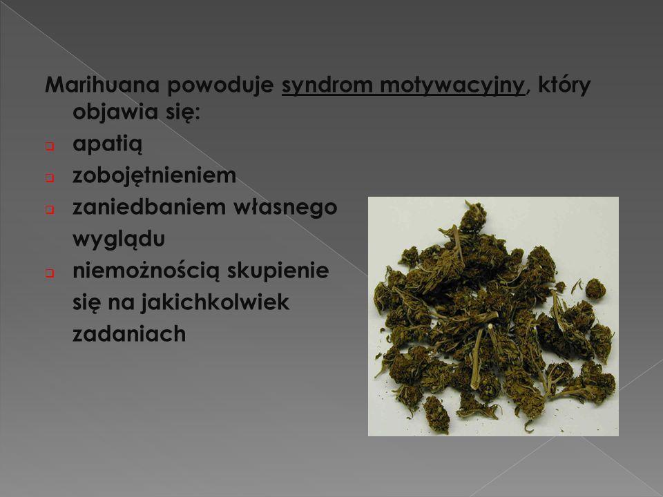 Marihuana powoduje syndrom motywacyjny, który objawia się:  apatią  zobojętnieniem  zaniedbaniem własnego wyglądu  niemożnością skupienie się na j