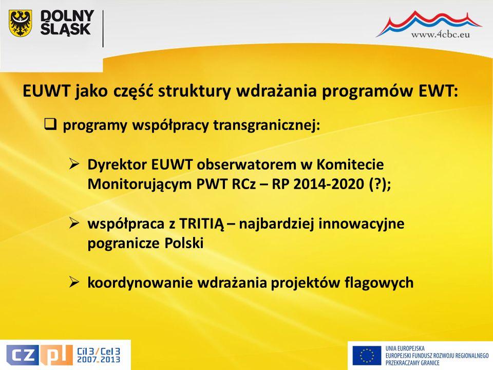17 EUWT jako część struktury wdrażania programów EWT:  programy współpracy transgranicznej:  Dyrektor EUWT obserwatorem w Komitecie Monitorującym PWT RCz – RP 2014-2020 ( );  współpraca z TRITIĄ – najbardziej innowacyjne pogranicze Polski  koordynowanie wdrażania projektów flagowych
