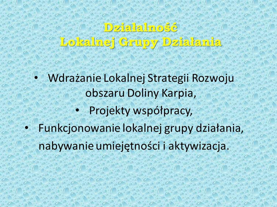 Działalność Lokalnej Grupy Działania Wdrażanie Lokalnej Strategii Rozwoju obszaru Doliny Karpia, Projekty współpracy, Funkcjonowanie lokalnej grupy działania, nabywanie umiejętności i aktywizacja.