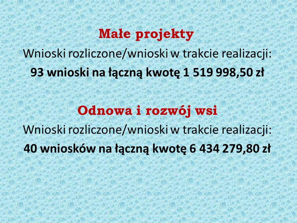 Małe projekty Wnioski rozliczone/wnioski w trakcie realizacji: 93 wnioski na łączną kwotę 1 519 998,50 zł Odnowa i rozwój wsi Wnioski rozliczone/wnioski w trakcie realizacji: 40 wniosków na łączną kwotę 6 434 279,80 zł