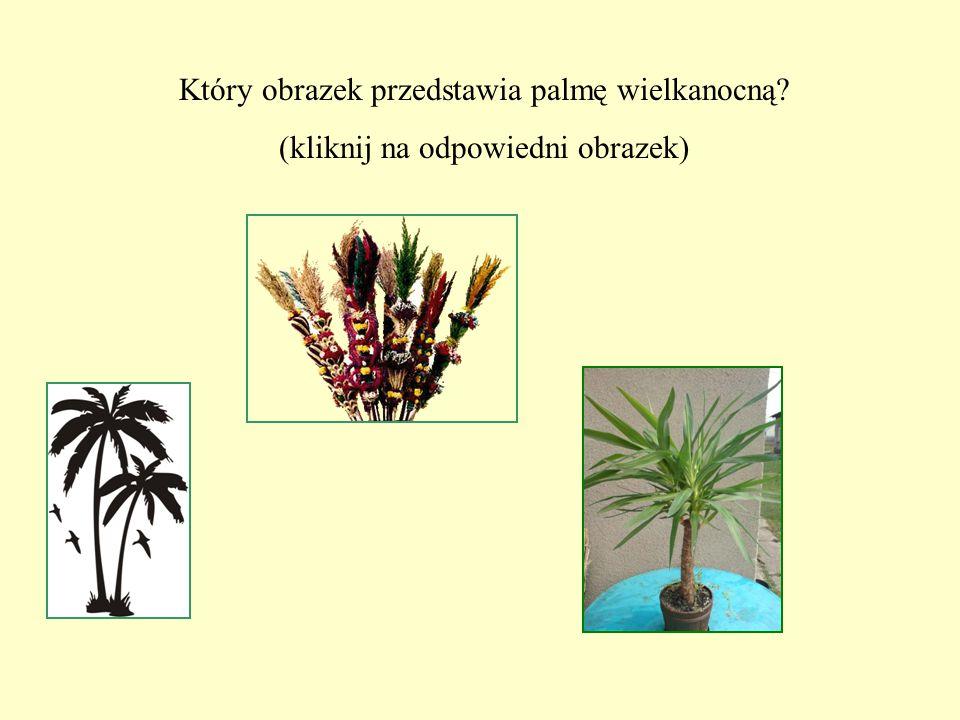 Który obrazek przedstawia palmę wielkanocną? (kliknij na odpowiedni obrazek)