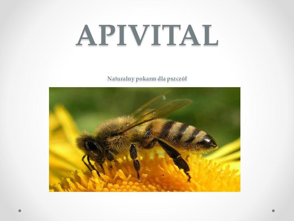APIVITAL Naturalny pokarm dla pszczół