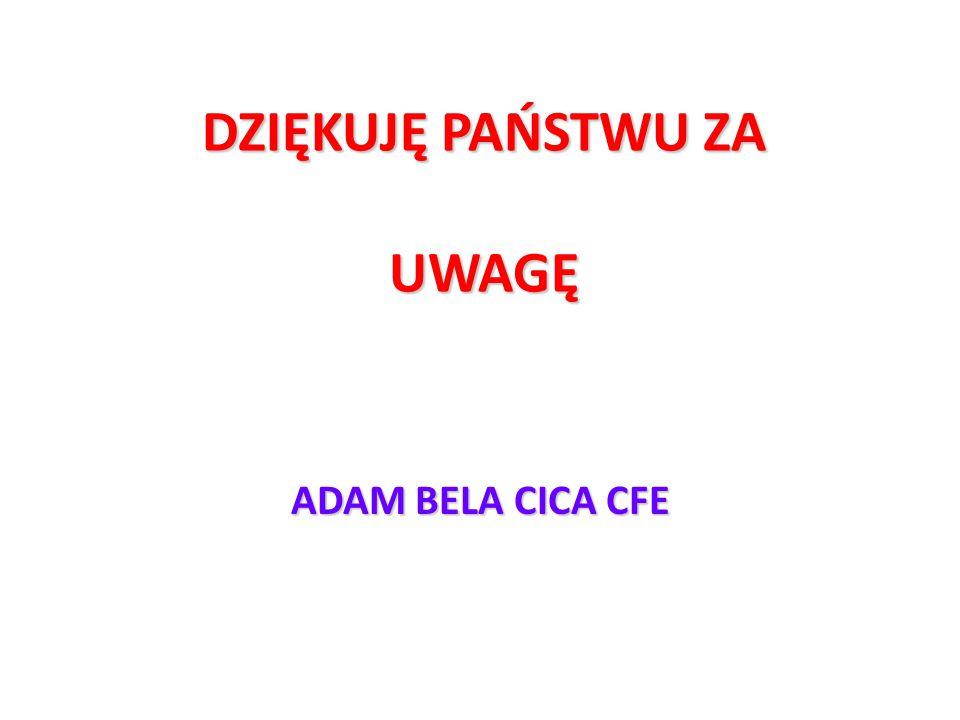 DZIĘKUJĘ PAŃSTWU ZA UWAGĘ ADAM BELA CICA CFE